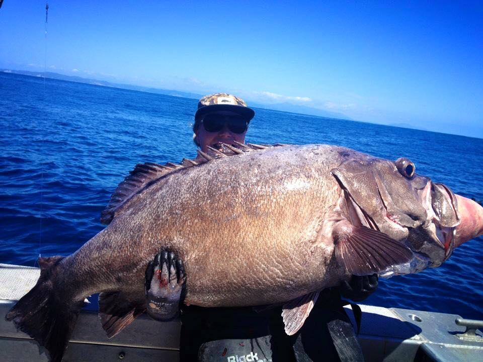 Coastal fishing charters at Ranfurly Banks