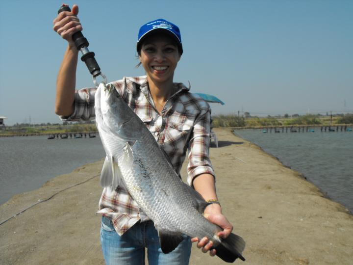 Barramundi - Thailand Fishing Guide