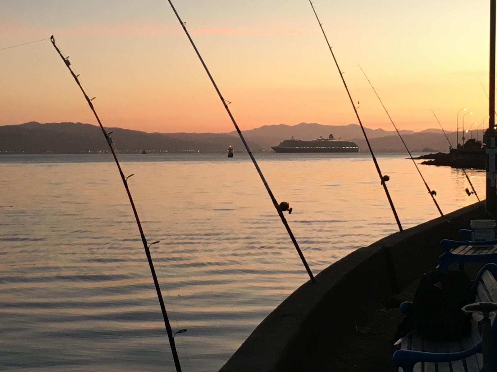 Primo Kingfishing Weather Wellington New Zealand