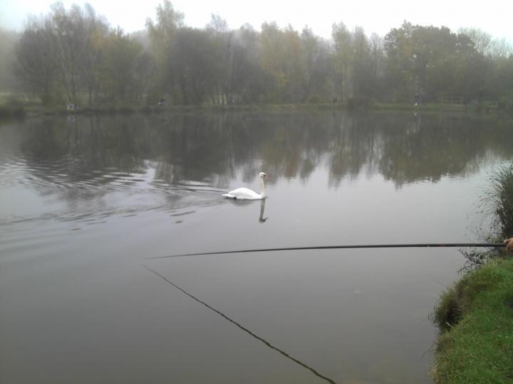 england fishing
