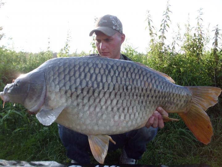 17.6kg