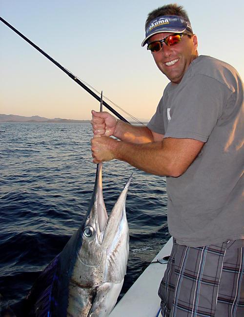 Heavy Striped Marlin