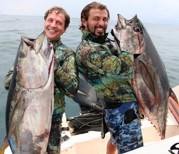 Two YellowFin Tuna