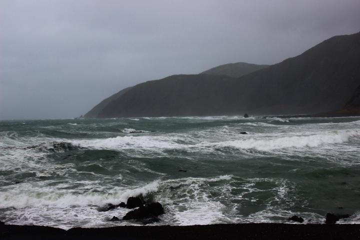 Wellington South Coast 5-03-2014