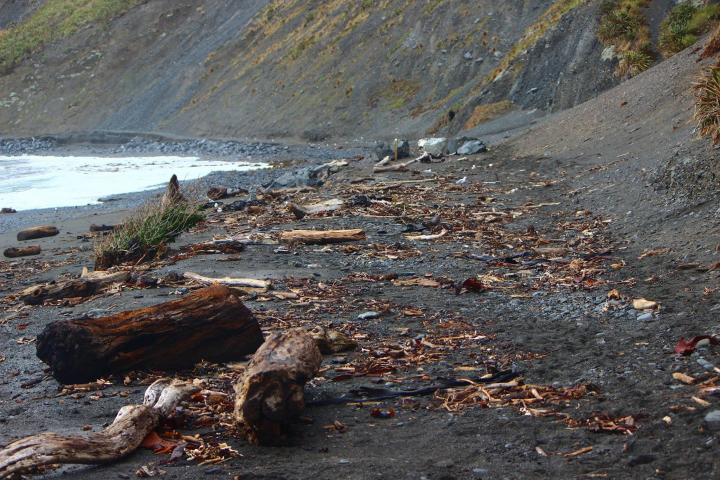 Red Rocks Road Gone