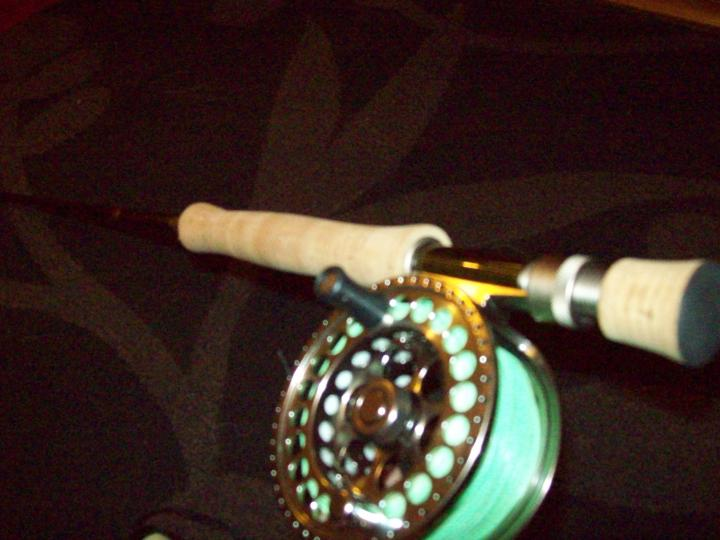The reel on the rod