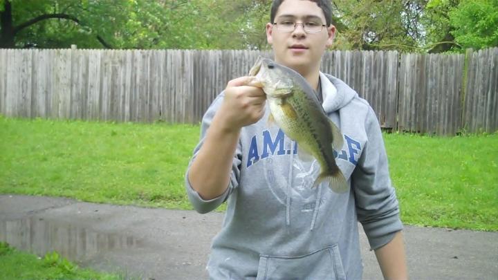 bass wwwoods