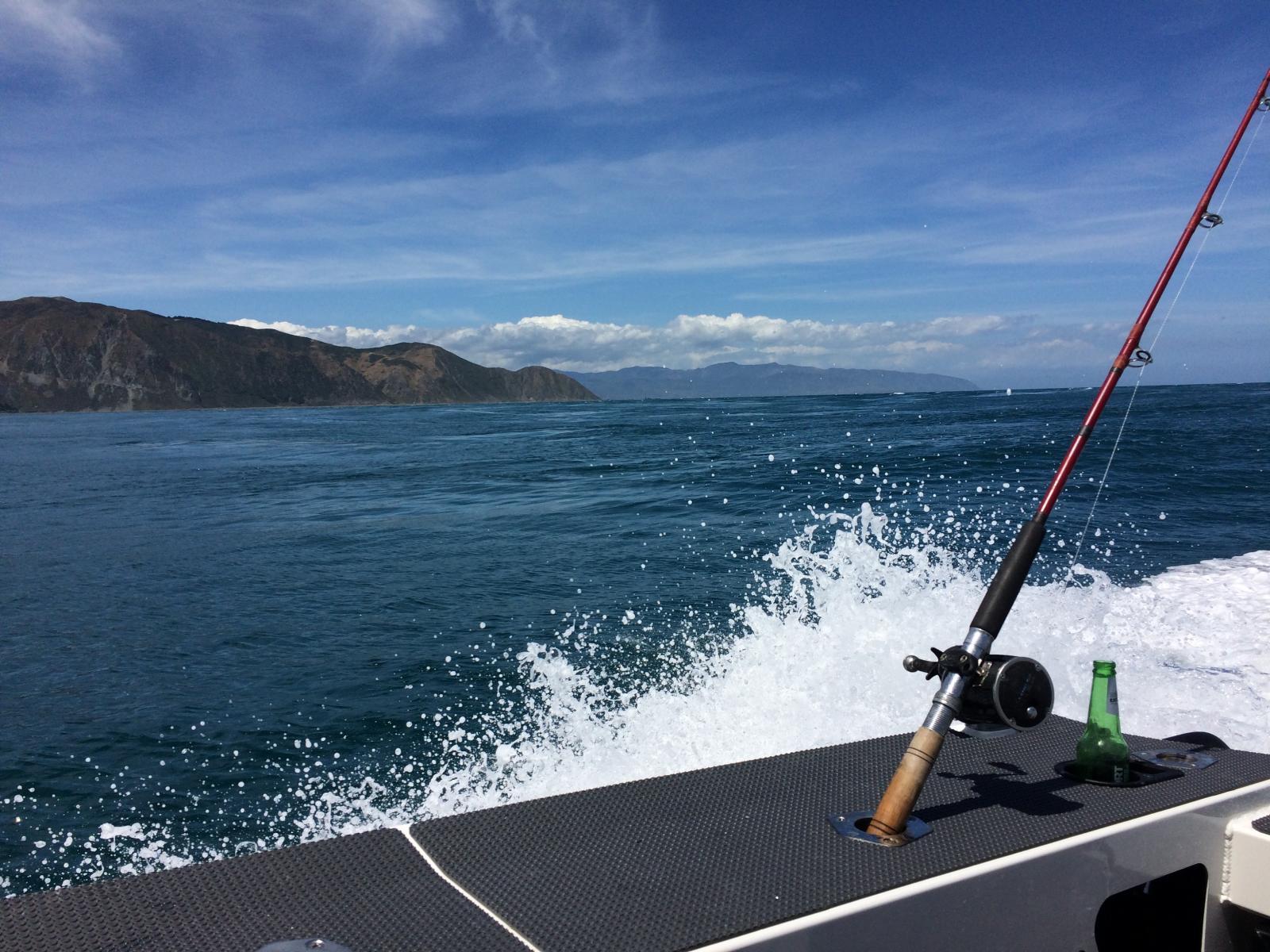 Best Boat In Wellington