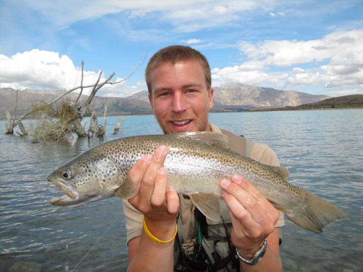 Lake/brown Trout at lake tekapo