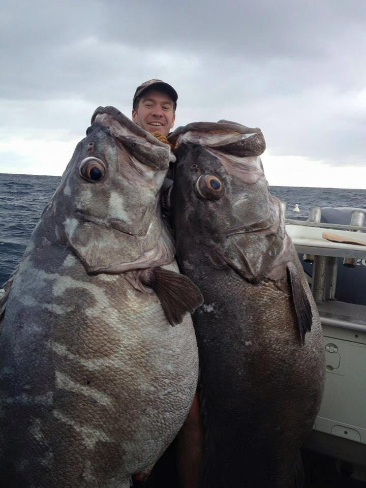 No Photoshop just real deep water fishing in New Zealand - Coastal fishing charters