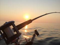 Fad fishing is a the best thing you could do in Costa Rica