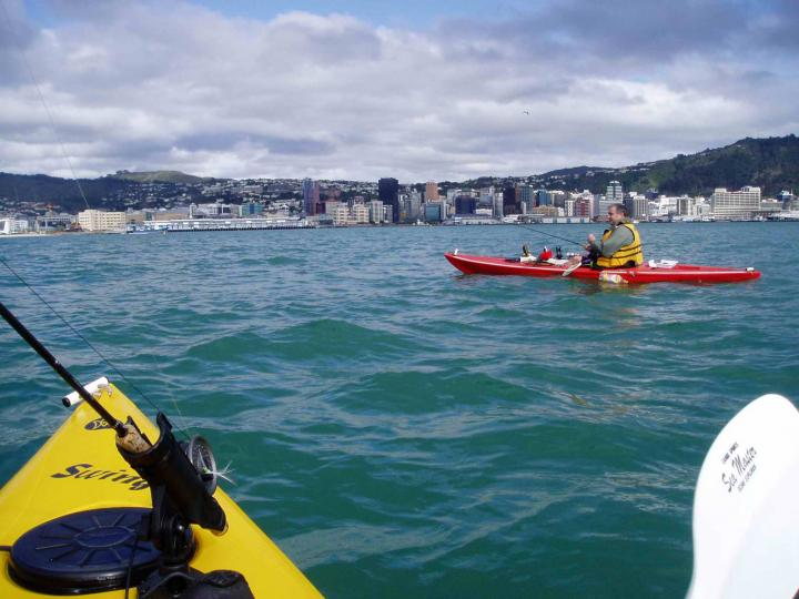 Kayak fishing In Wellington