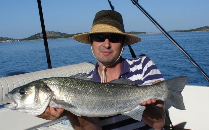 labrax - European SeaBass, 3.2kg