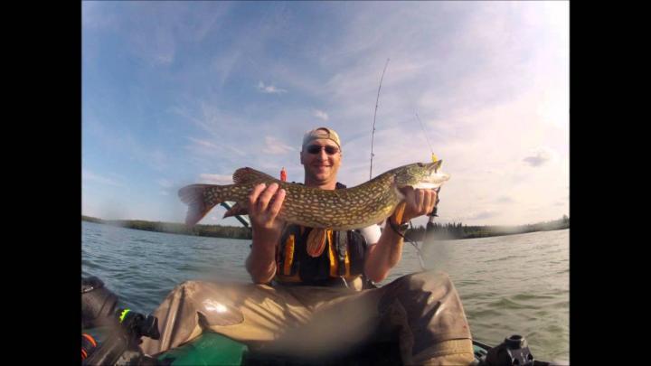 Pike fishing on Winefred Lake